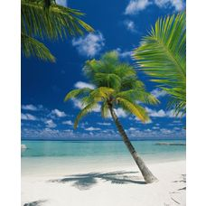 Product_partial_4-883_ariatoll_hd