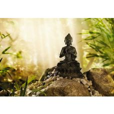 Product_partial_1-610_buddha_hd