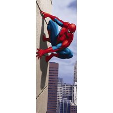 Product_partial_1-442_spiderman_90_degree_hd