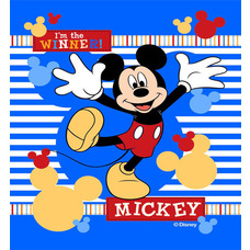 Product_partial_mickey_2